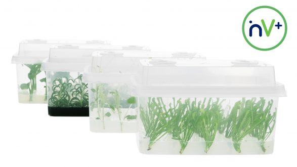 inVenti+ cultivation vessels with filters
